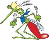 Mosquito alimentacion