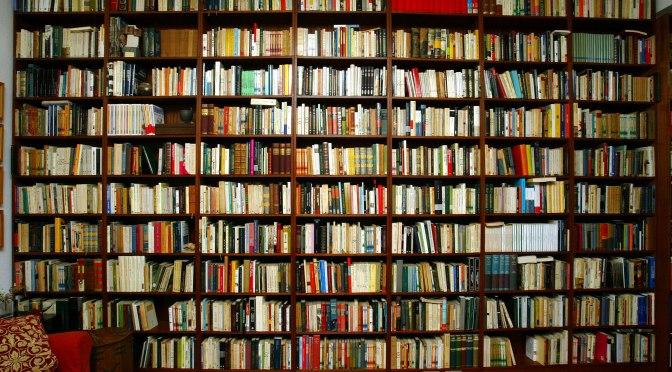 Bibliografía / Bibliografia