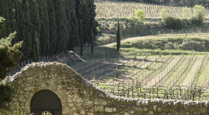 Albet i Noya, pioneros en viñas y vinos ecológicos