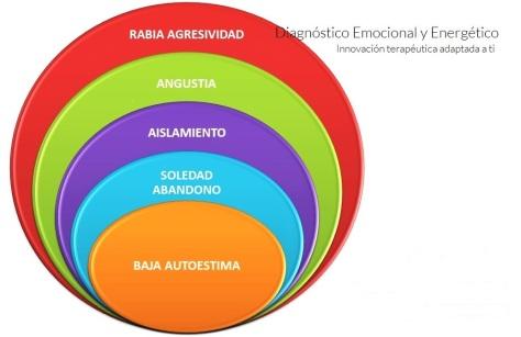 imagen-web